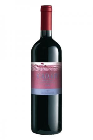 una bottiglia di S'adatt - Aglianico del Vulture - vino rosso - Michele Laluce al Ristorante Mangio Roma